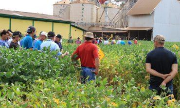 Copagril realiza Dia de Campo Cultivares de Soja em Bela Vista