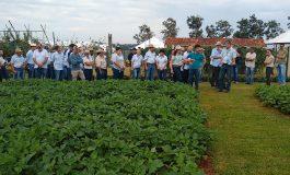 Emater mostra maior sustentabilidade e rentabilidade para o campo