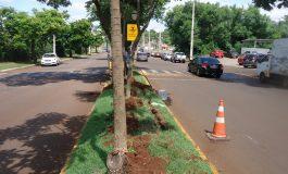 Avenida Rio Grande do Sul terá iluminação de LED