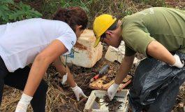 Em Marechal Rondon aumenta a preocupação com a dengue: População deve fazer a sua parte