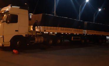 PRF apreende R$ 6 milhões em cigarros, recupera caminhão roubado e prende duas pessoas