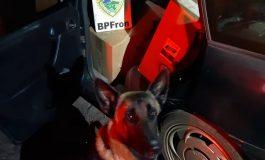 BPFron apreende veículo carregado com cigarros contrabandeados durante Operação Hórus em Quatro Pontes
