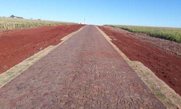 Furto de grama em rodovia rondonense