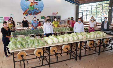 Famílias cadastradas nos programas sociais em Pato Bragado passam a receber produtos orgânicos e agroecológicos