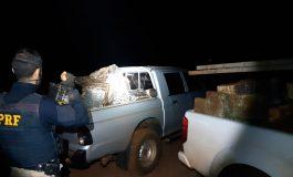 Operação Tamoio: PRF apreende quase três toneladas de maconha em Pato Bragado (PR)