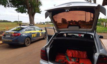 Operação Flagellum: PRF prende traficante que transportava maconha no carro da própria mãe em Marechal Rondon; assista