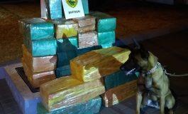 BPFron apreende 385 quilos de maconha em Toledo
