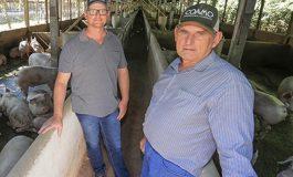 Produtores rurais de Nova Santa Rosa são destaques na Revista Coamo