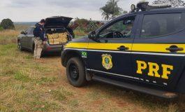 PRF apreende 822 quilos de maconha na fronteira do PR com MS