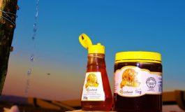 Cooperativa do Oeste espera movimentar aproximadamente 200 toneladas de mel na safra 2020-2021