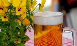 Com assistência técnica da Biolabore família empreende com cervejaria artesanal no Oeste