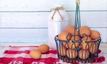 Setor comemora dia mundial do ovo com projeções recordes em cenário complexo