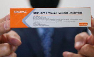 Primeiro lote da CoronaVac com 120 mil doses chega ao Brasil