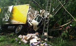 Condutor de caminhão morre ao sair da pista e bater contra árvores na região central do Paraná