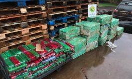 BPFron apreende 814 quilos de maconha na PR-491, entre Nova Santa Rosa e Maripá