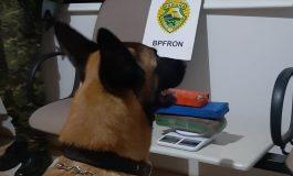 BPFron apreende tabletes de maconha durante Operação Hórus em Pato Bragado