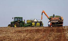 Boletim agropecuário retrata atraso nas lavouras em razão das chuvas