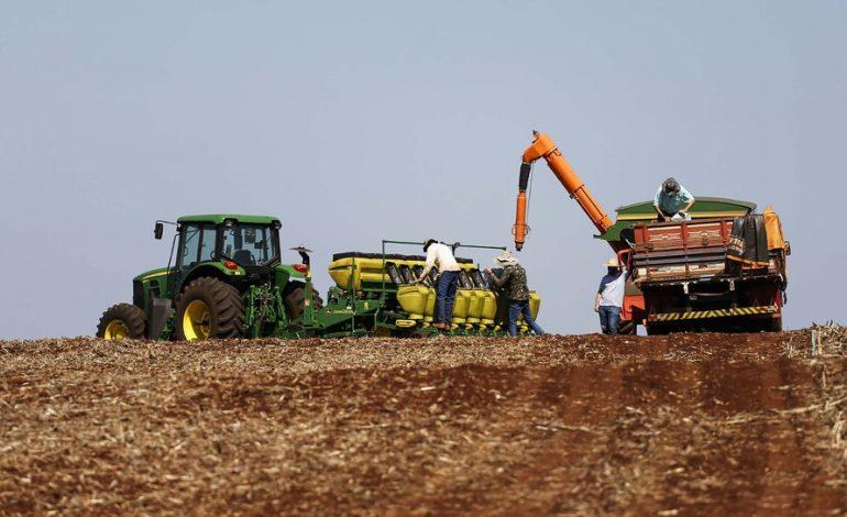 Embrapa: Brasil será maior exportador de grãos do mundo em cinco anos